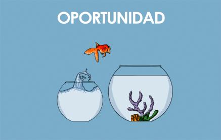 oportunidad.png
